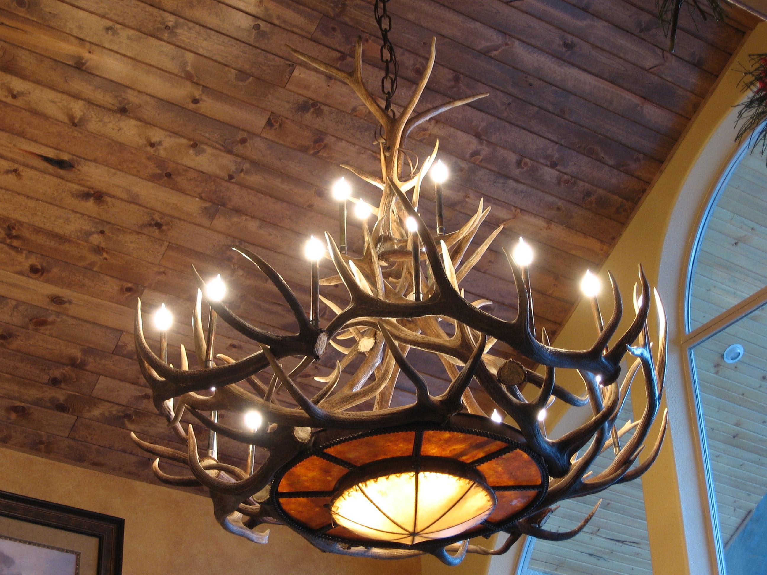Elk Antler Light Fixtures