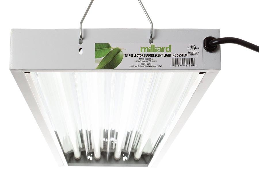 4 Bulb T8 Light Fixture