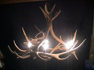 Making Deer Antler Chandelier