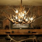 Whitetail Deer Antler Chandeliers